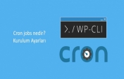 What is cron jobs and how to set it up?